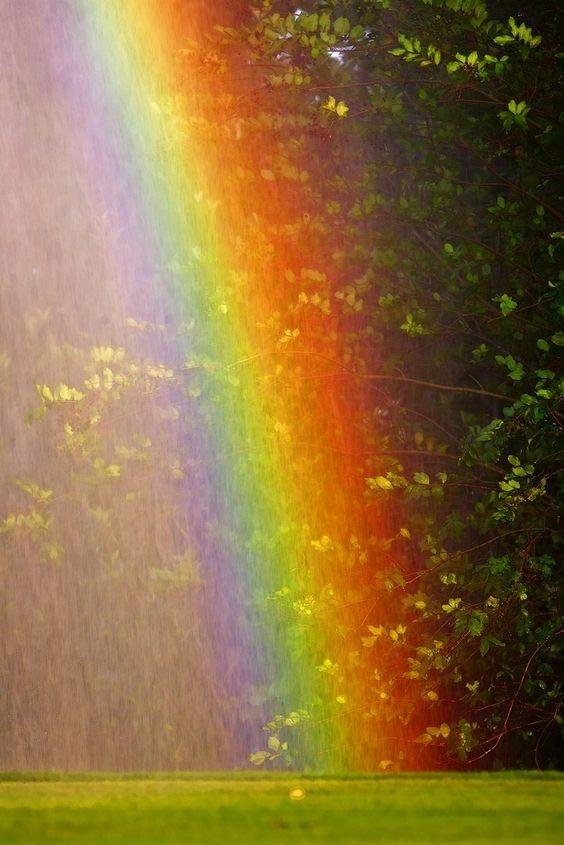 Cromoterapia: puterea vindecatoare a culorilor si luminii