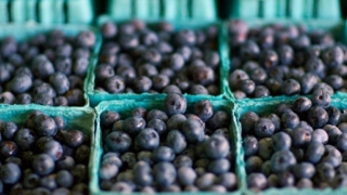 5 Alimente care te ajuta sa te concentrezi