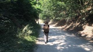 Mersul pe jos – antrenamentul meu zilnic si reconectarea cu natura