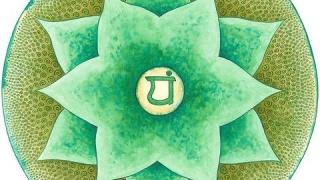 SERIA CHAKRELOR: Cum ne echilibram chakra inimii sau Anahata?